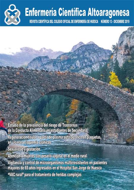 revista-cientifica-altoaragonesa-n13-2019